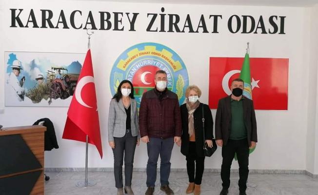 Bursa'da Çeltik Tarlarında Büyük Tehlike!