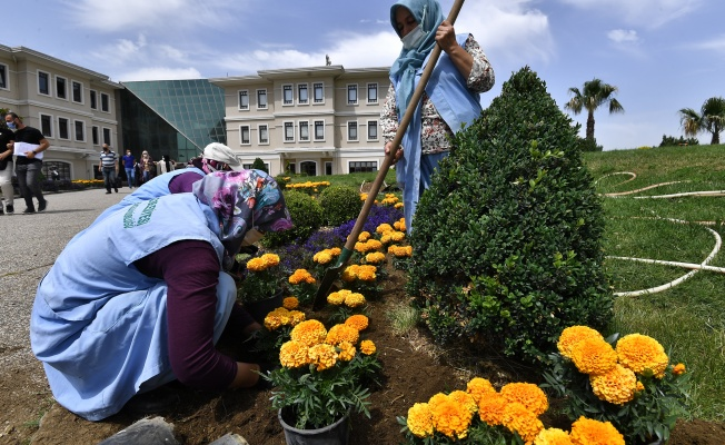 170 bin mevsimlik çiçek toprakla buluşuyor