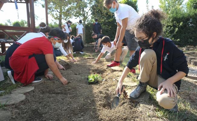 Nilüfer Belediyesi'nden okullara fide ve tohum desteği