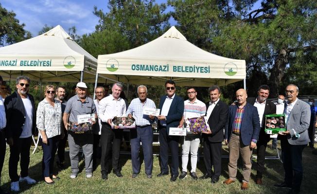 """Osmangazi'den """"Siyah İncir""""e yakışan festival"""