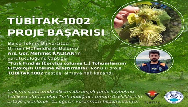 Türk Fındığı Araştırmasına TÜBİTAK Desteği