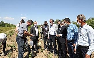 İnegöl Tarımı El Birliğiyle Şahlanıyor