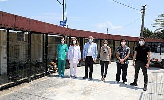 Mudanya veterinerlik birimi hayvan bakım evi yenilendi
