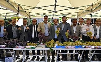 Osmangazi'de Festival Zamanı